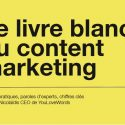 Content Marketing, Livre blanc